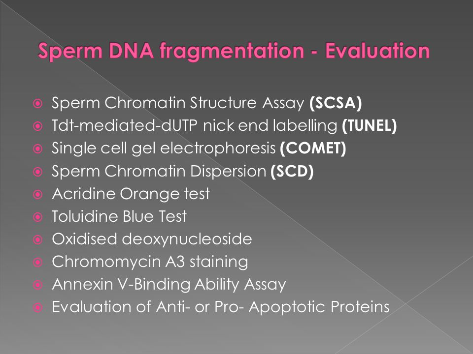 Sperm DNA fragmentation - Evaluation