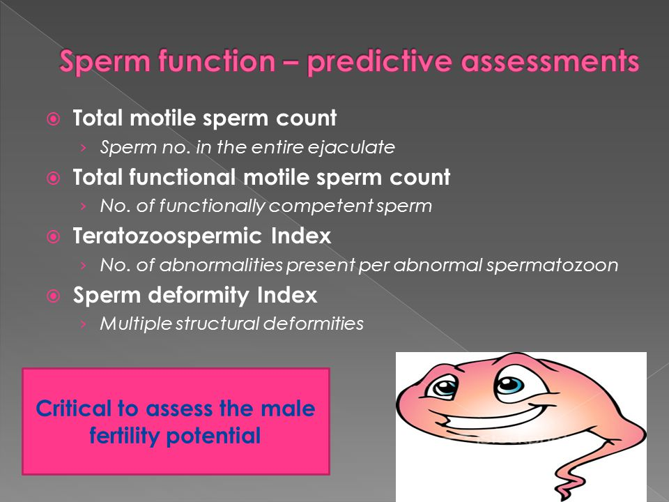 Sperm function – predictive assessments