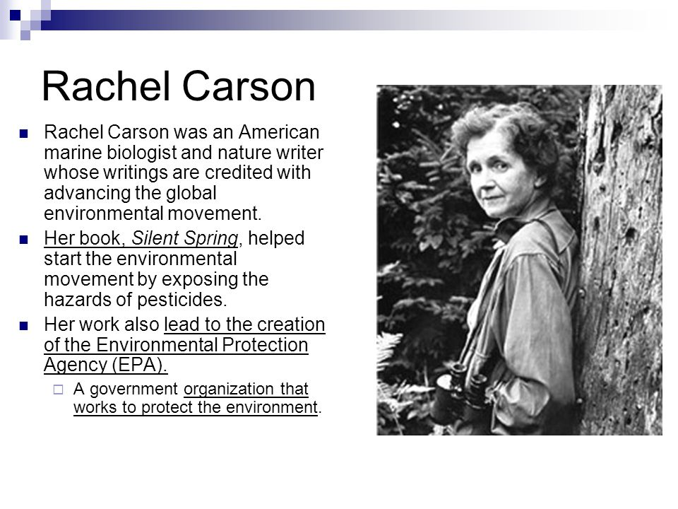 analyzing rachel carsons 1952 book silent spring Rachel louise carson (may 27, 1907 - april 14, 1964) was an american marine biologist, author, and conservationist whose book silent spring and other writings are credited with advancing the global environmental movement.