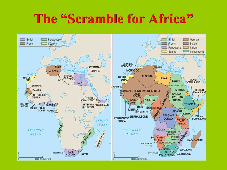 scramble for africa ap essay Struggling with joseph conrad's heart of darkness  time you complain about having to write an essay)  is set right after the scramble for africa,.