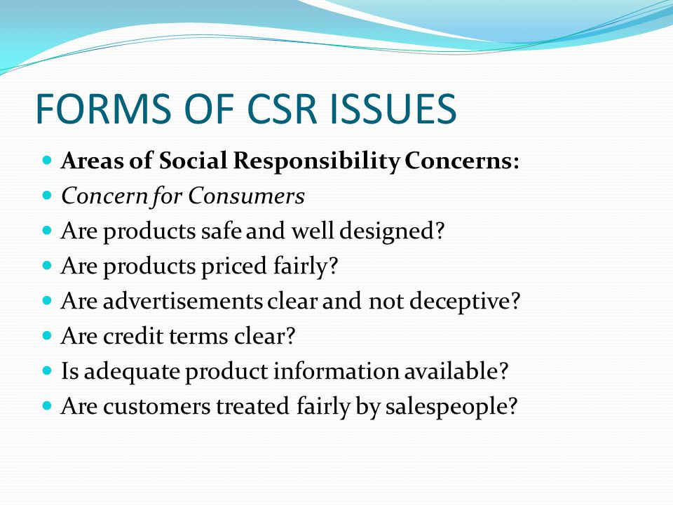 FORMS OF CSR ISSUES Areas of Social Responsibility Concerns: