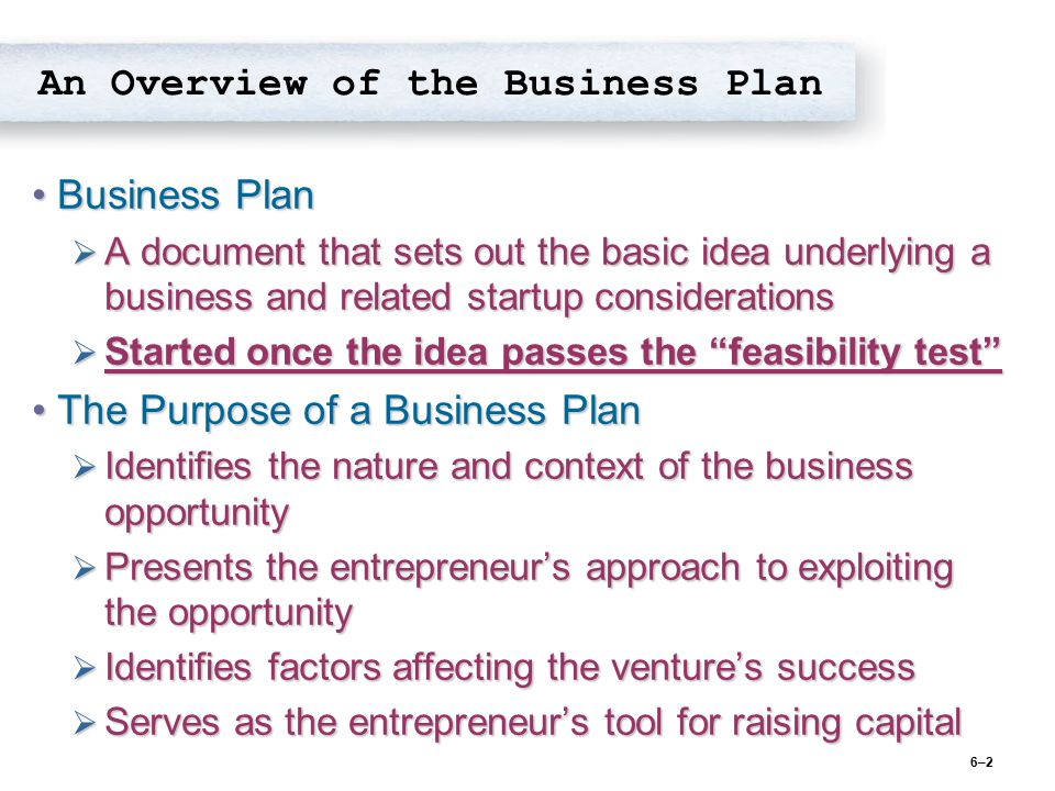 An Overview of the Business Plan