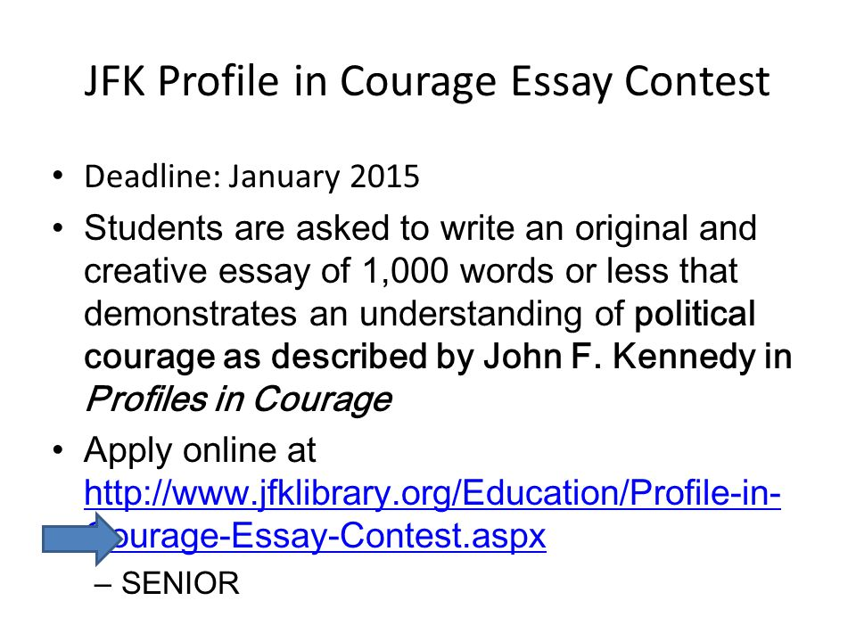 2013 profile in courage essay contest