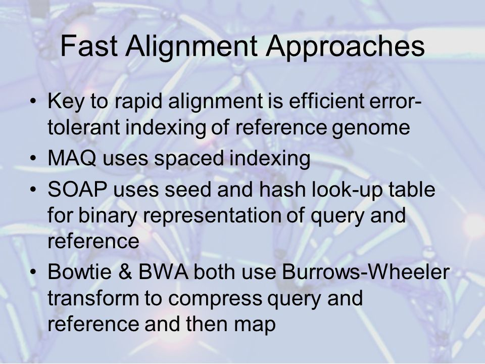 Fast Alignment Approaches