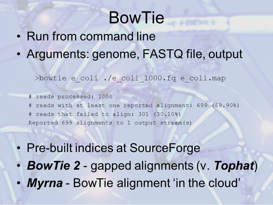 BowTie Run from command line Arguments: genome, FASTQ file, output