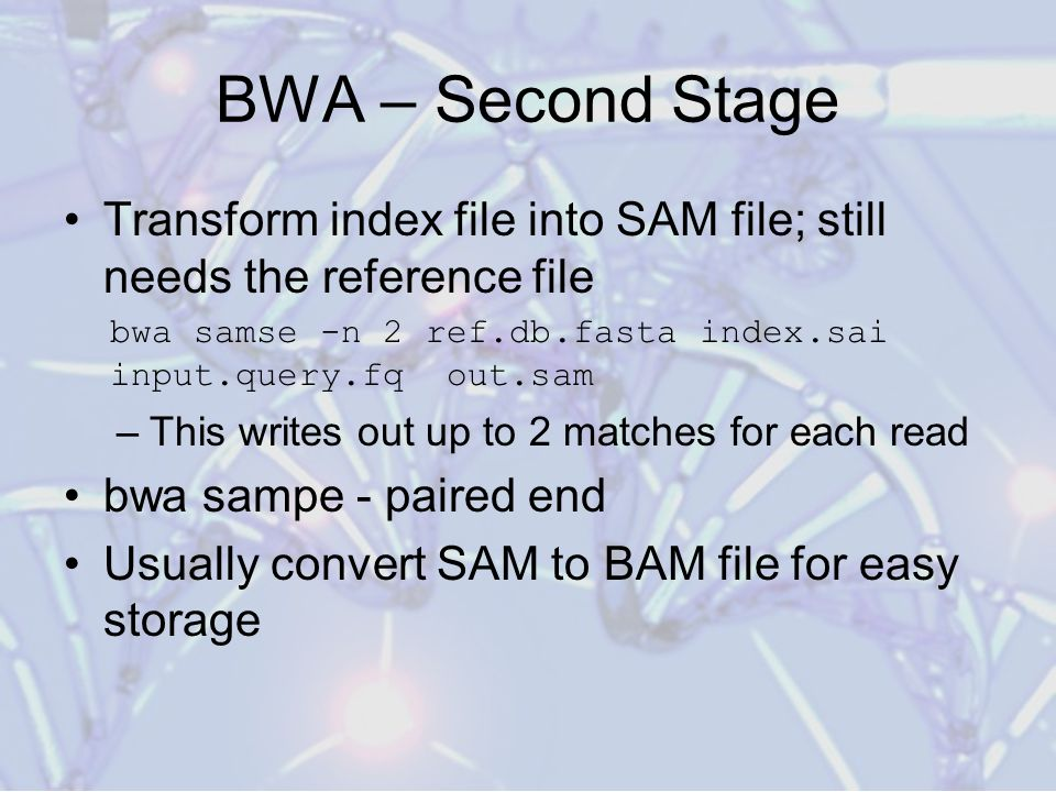 BWA – Second Stage Transform index file into SAM file; still needs the reference file. bwa samse -n 2 ref.db.fasta index.sai input.query.fq out.sam.