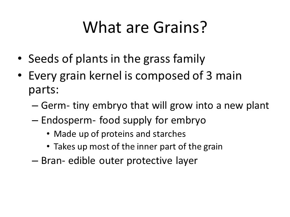 What are Grains Seeds of plants in the grass family