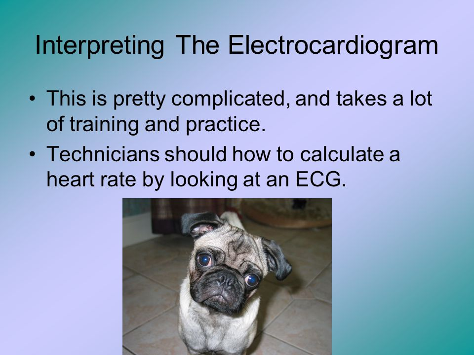 Interpreting The Electrocardiogram