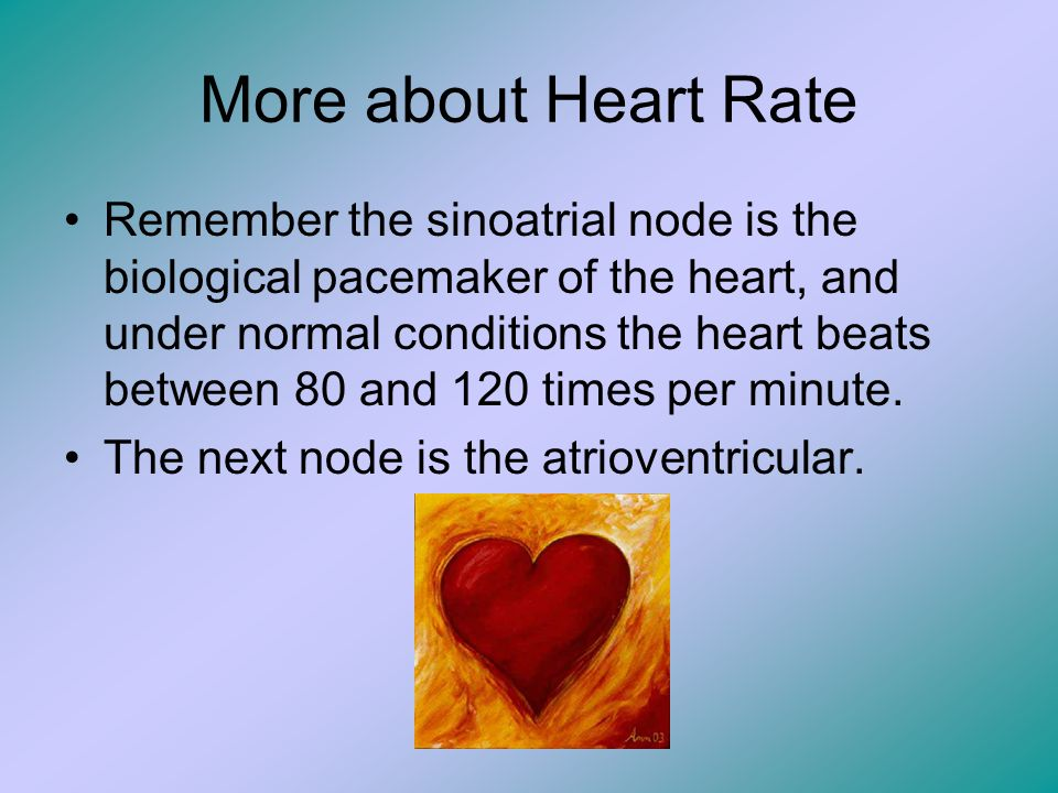 More about Heart Rate