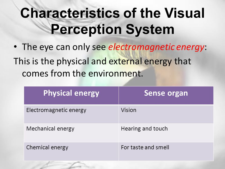 Examples List on The Features Of The Perception Process