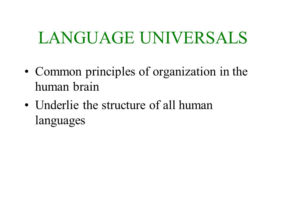 LANGUAGE UNIVERSALS Common principles of organization in the human brain.