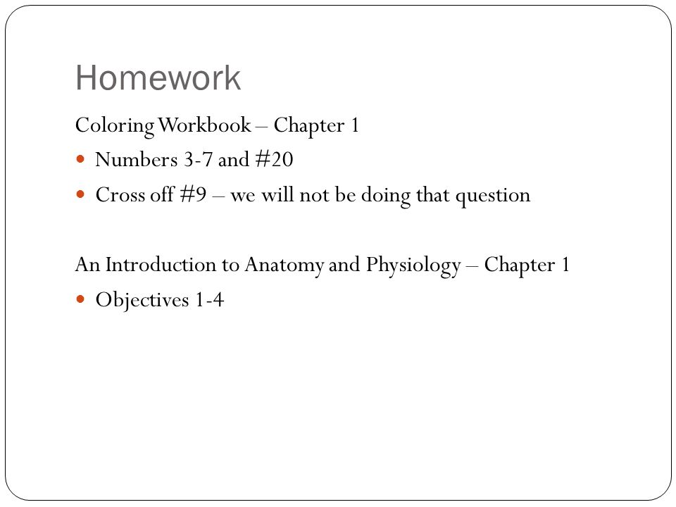 Schön Anatomy And Physiology Coloring Workbook Answer Key Chapter 1 ...
