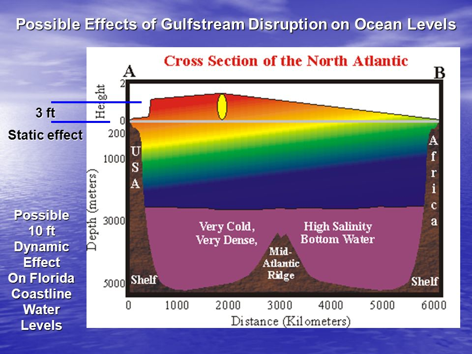 Possible Effects of Gulfstream Disruption on Ocean Levels
