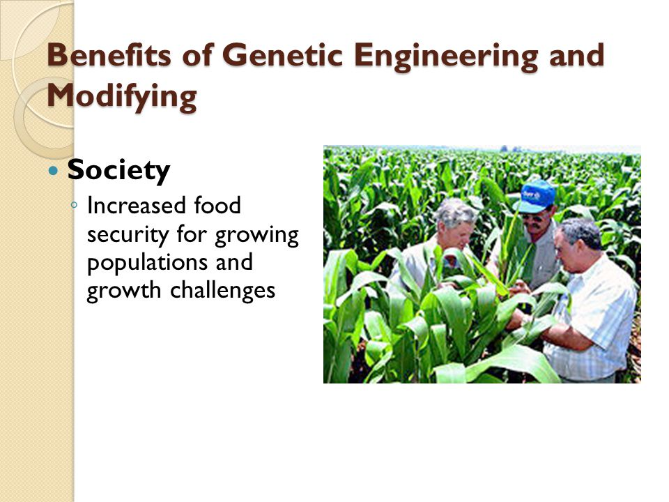 the potential benefits of genetic engineering Some of the benefits of genetic engineering are as follows: 1) by using the techniques of genetic engineering, first human insulin developed for the diabetic patients insulin is a special component of the body and lack of this component causes diabetes.