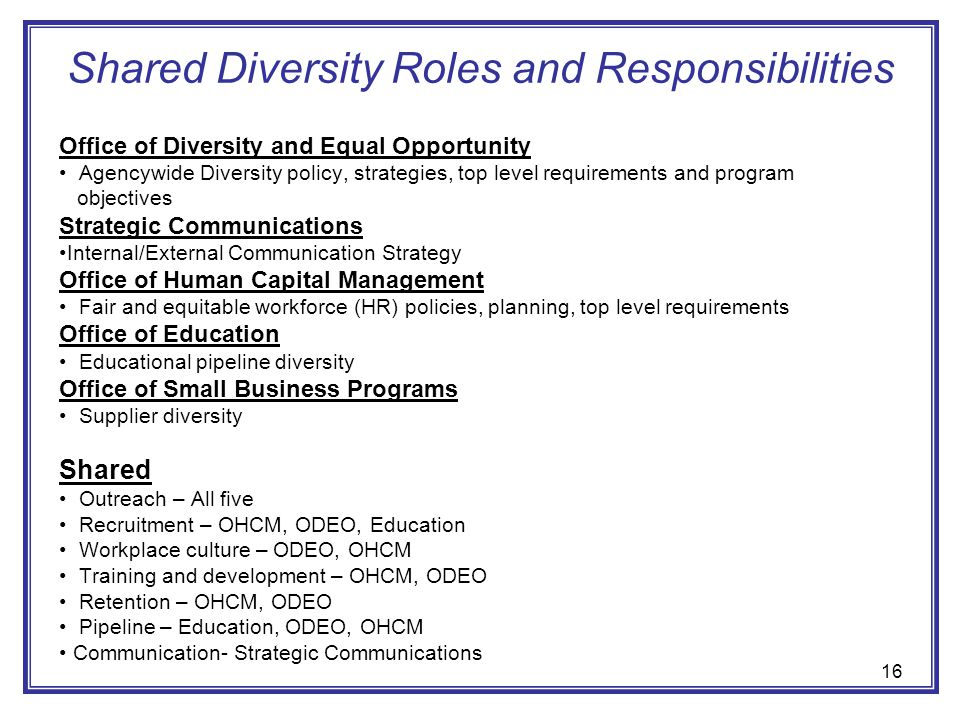 Shared Diversity Roles and Responsibilities