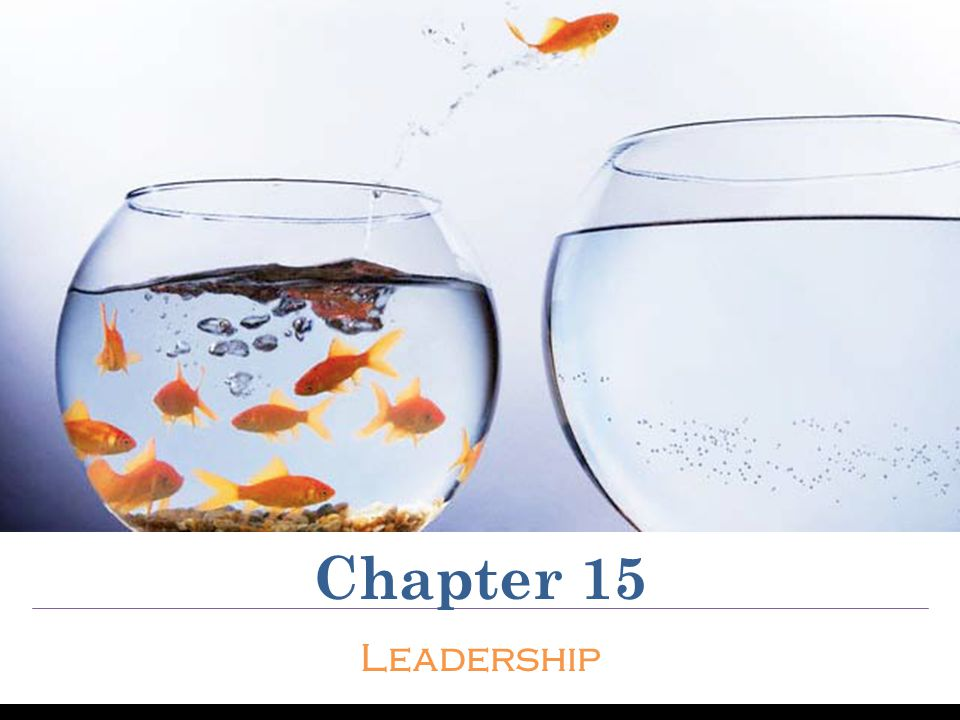 explain the 5 sources of leader New workplaces, new food sources, new medicine--even an entirely new economic system innovation by design celebrating the best ideas in business  the 5 characteristics of great leaders.