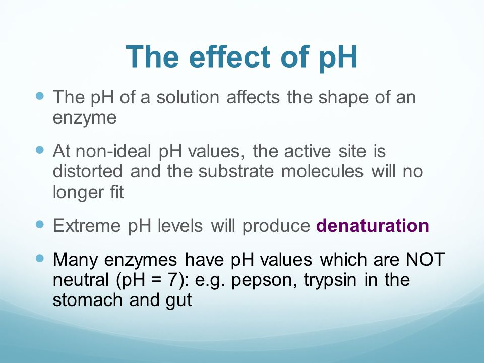 the affects of ph and pepsin While some of the presentation may seem somewhat dated, the basic concepts are still helpful for researchers who must use enzymes but who have little background in enzymology effects of ph enzymes are affected by changes in ph.