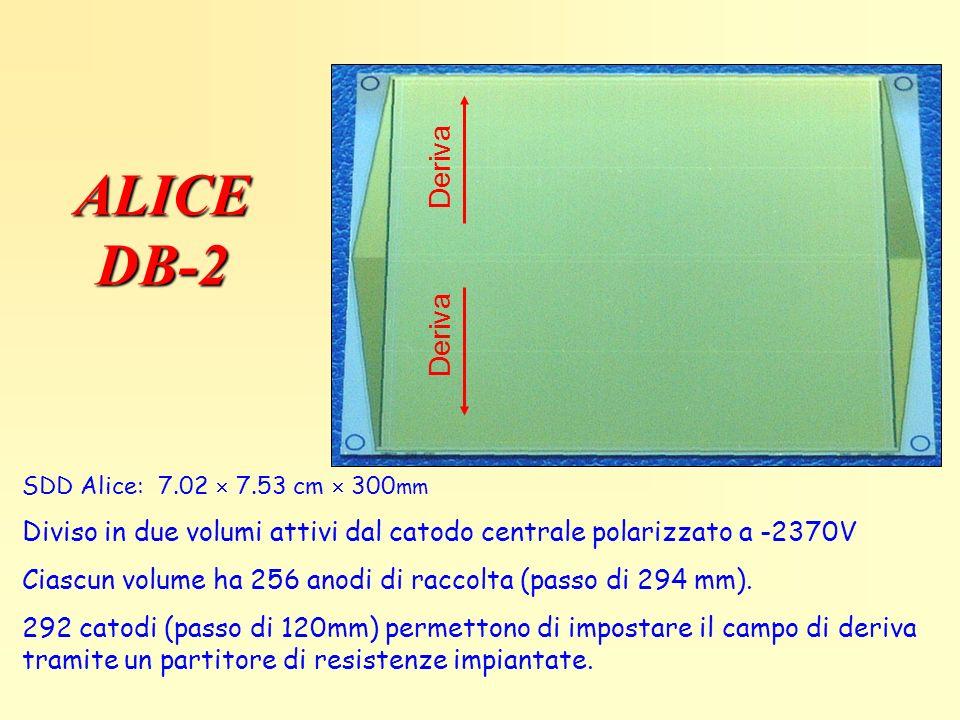 ALICE DB-2 Deriva Deriva