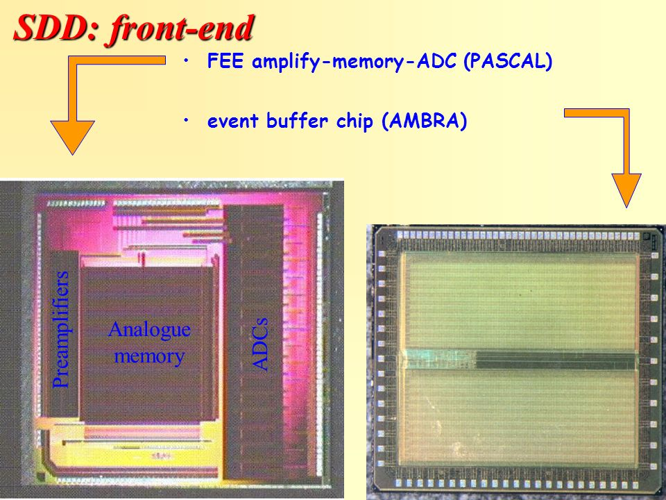 SDD: front-end Preamplifiers Analogue ADCs memory