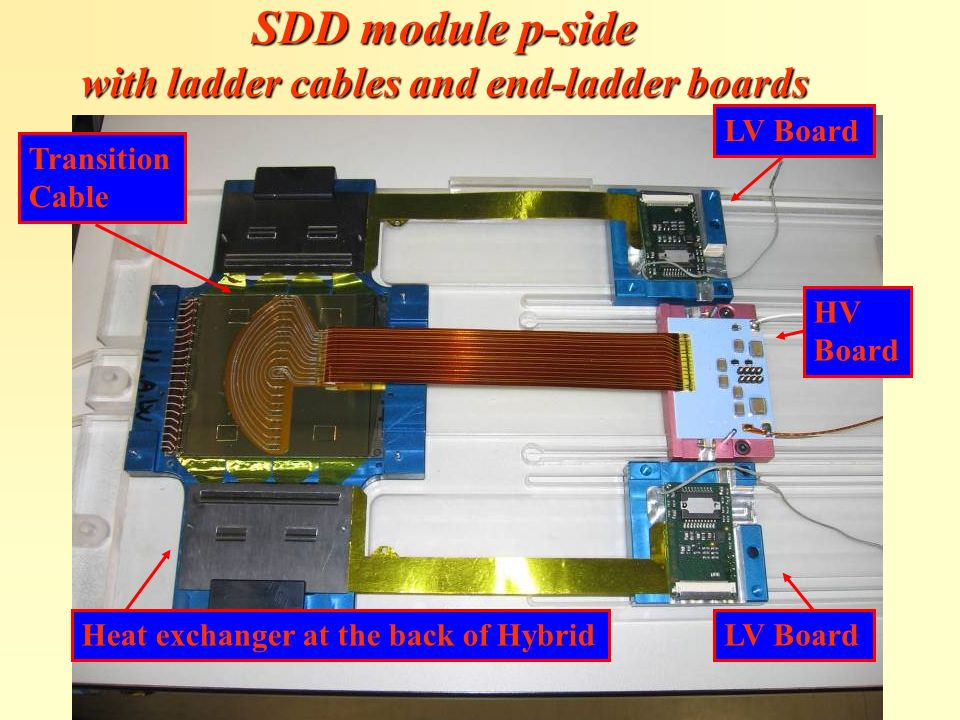 SDD module p-side with ladder cables and end-ladder boards