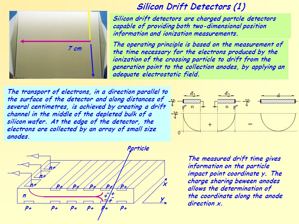 Silicon Drift Detectors (1)