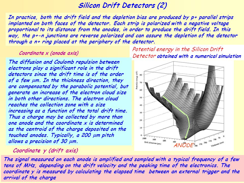 Silicon Drift Detectors (2)