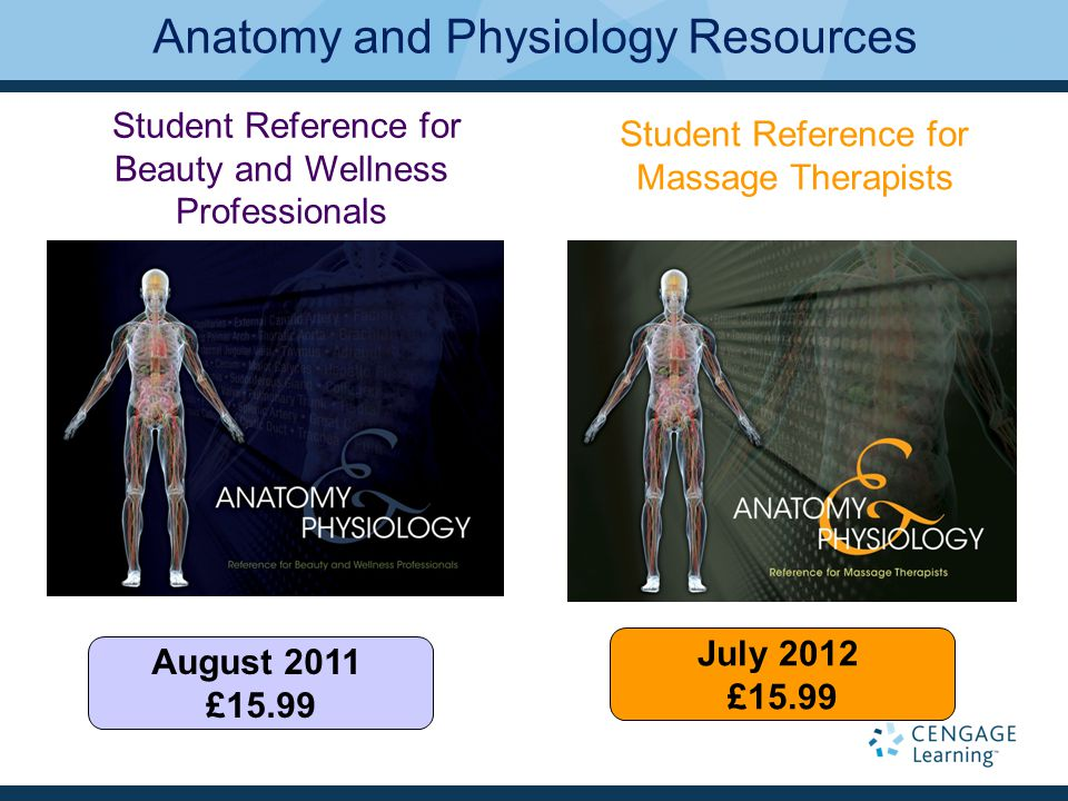 Atemberaubend Principles Of Anatomy And Physiology 13th Edition Pdf ...