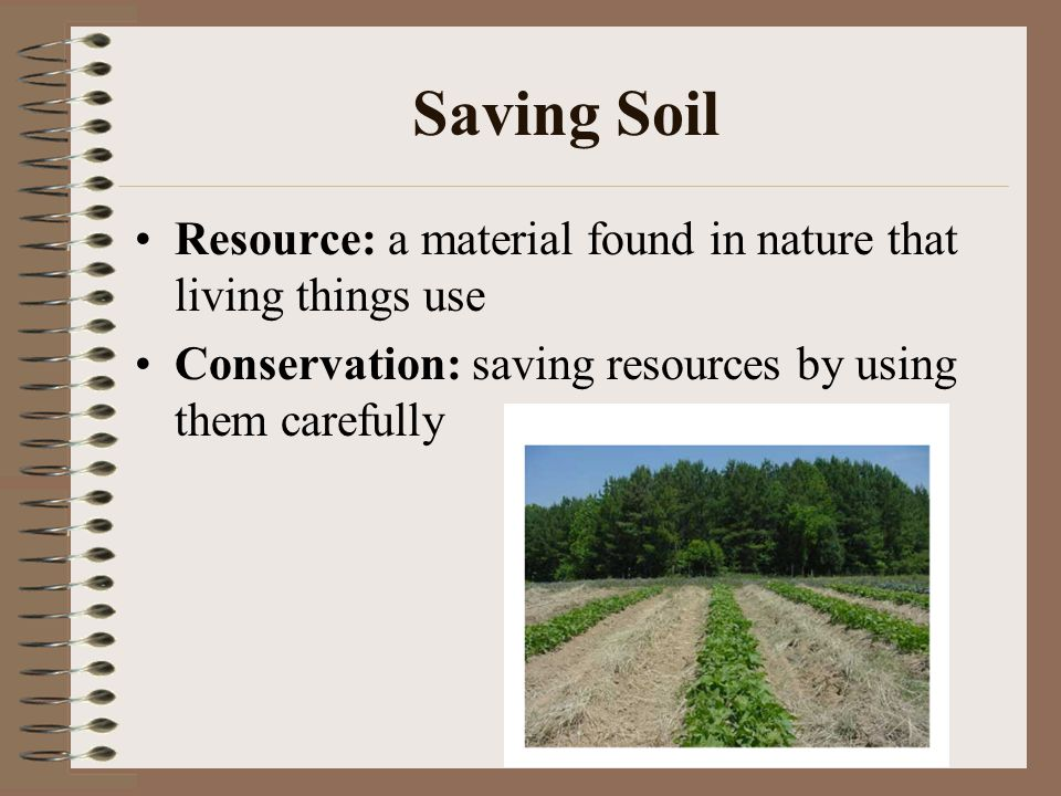 Soil ppt video online download for Things found in soil