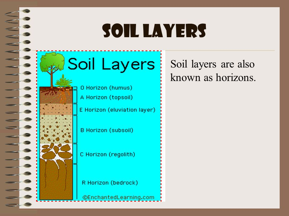 Soil ppt video online download for What are the different layers of soil