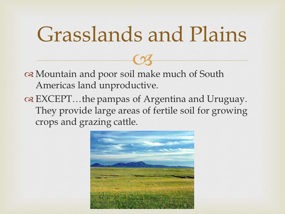Grasslands and Plains Mountain and poor soil make much of South Americas land unproductive.