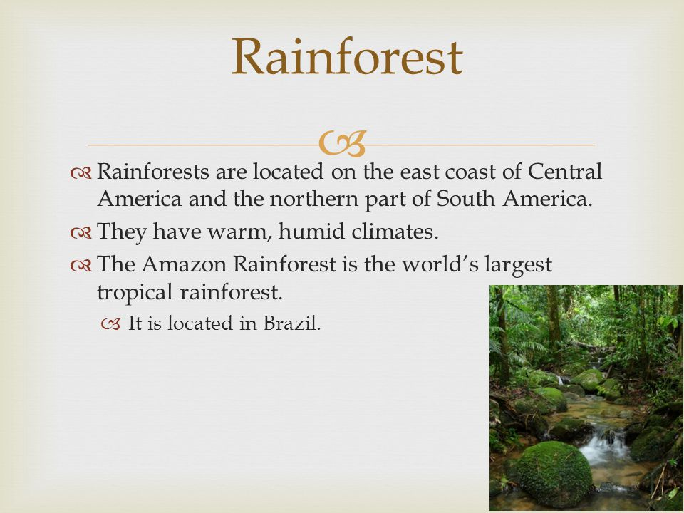 Rainforest Rainforests are located on the east coast of Central America and the northern part of South America.