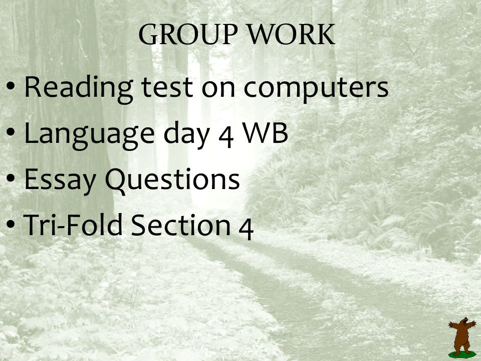 marven of the great north woods ppt video online  reading test on computers language day 4 wb essay questions
