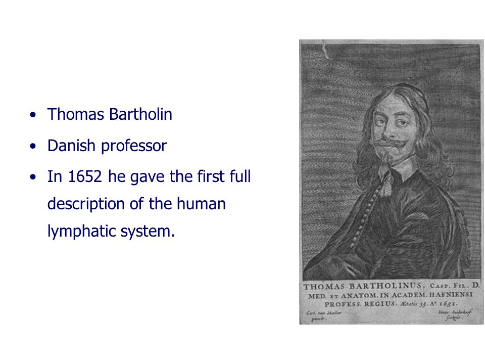Thomas Bartholin Danish professor.