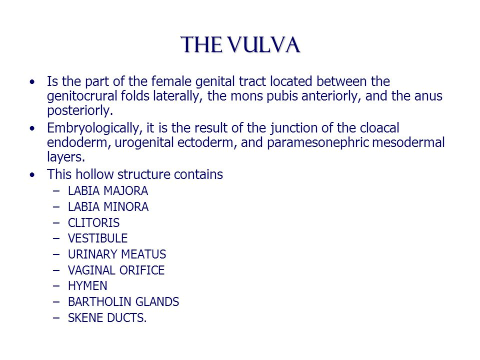 benign diseases of the vulva, vagina and cervix - ppt video online, Human Body