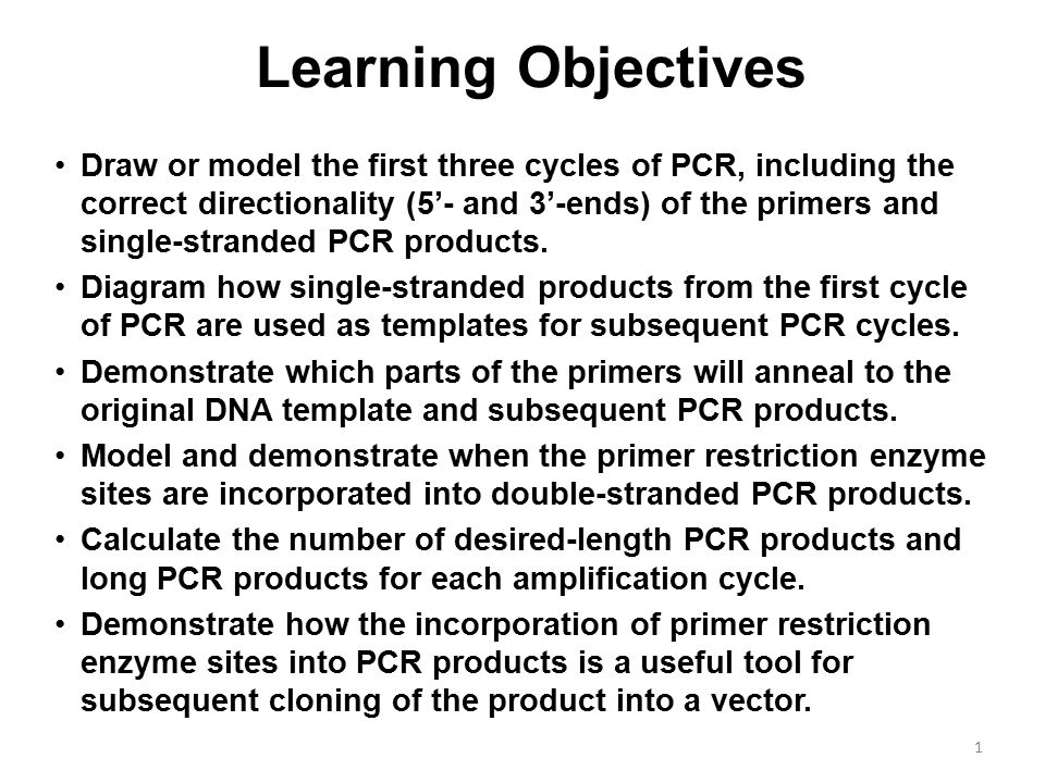 Learning Objectives Draw or model the first three cycles of PCR, including  the correct directionality (5'- and 3'-ends) of the primers and  single-stranded