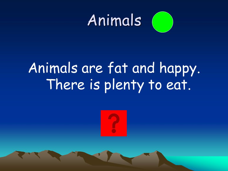 Animals are fat and happy. There is plenty to eat.