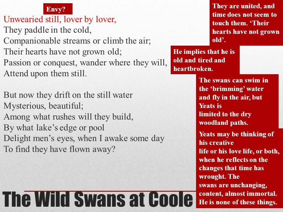 the wild swans at coole analysis essay - an analysis of blake's the wild swans at coole the wild swans at coole is a poem that deals with the aging process of william butler yeats it is a deeply personal poem that explores the cycle of life through nature.