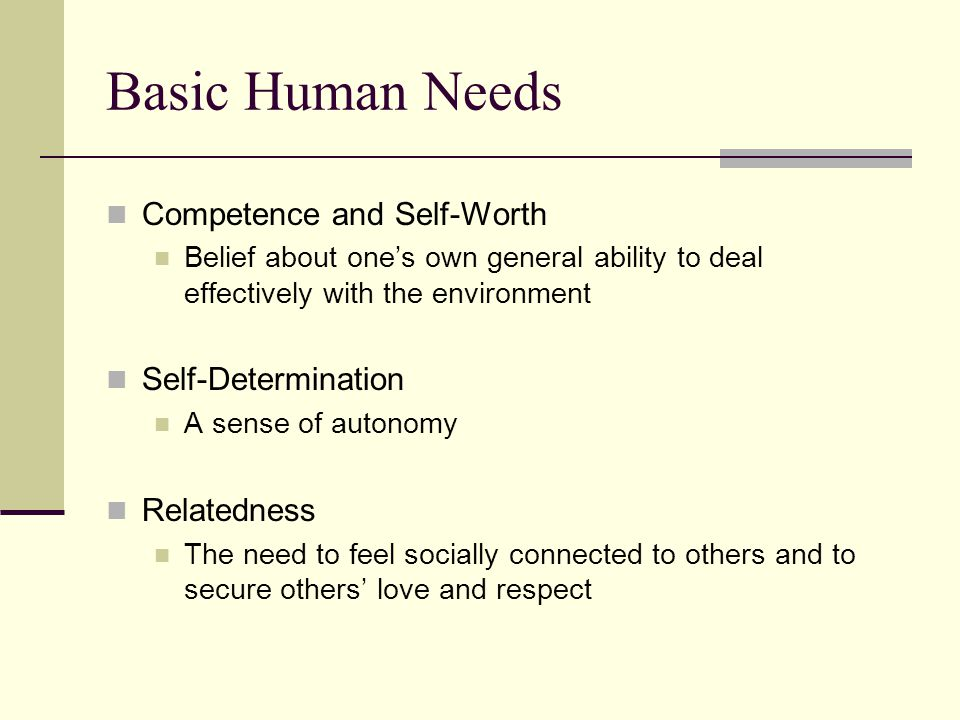Basic Human Needs Competence and Self-Worth Self-Determination