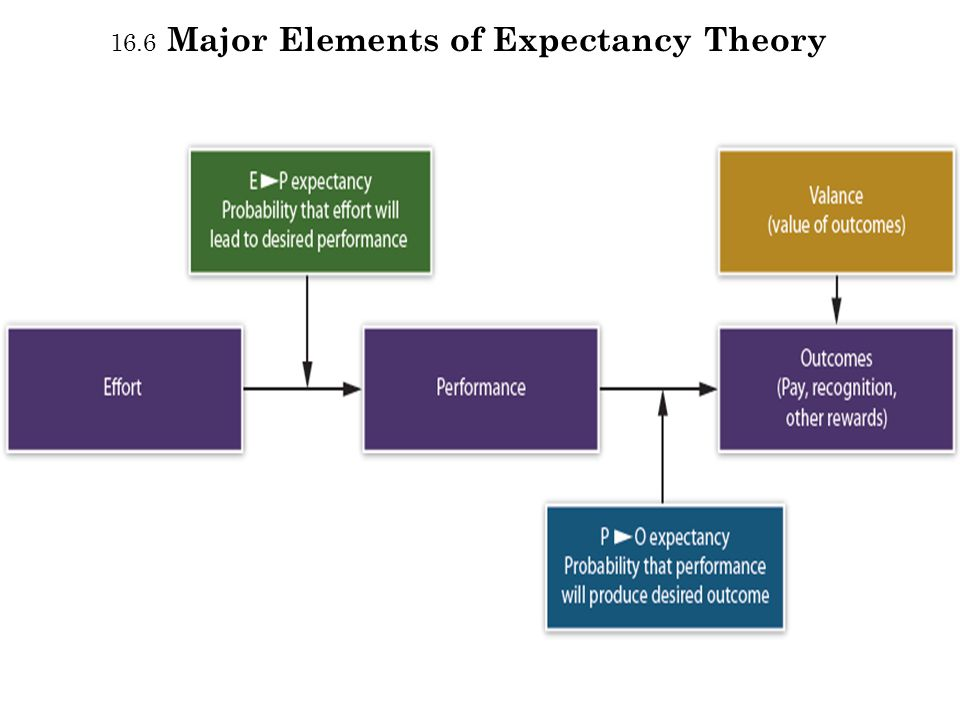 16.6 Major Elements of Expectancy Theory