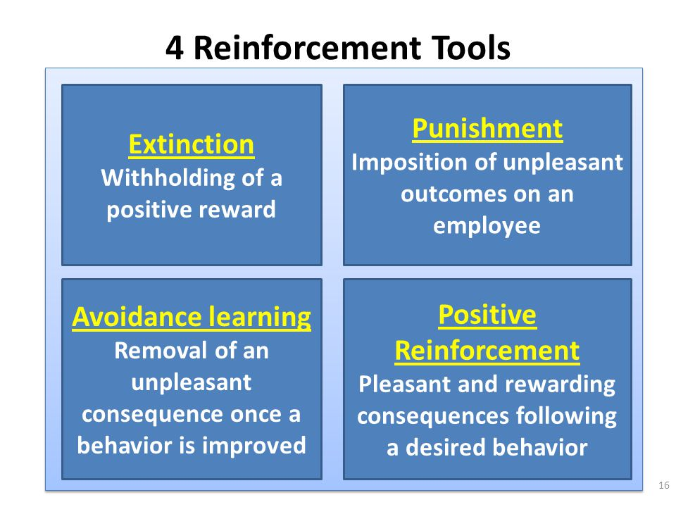 4 Reinforcement Tools Punishment Extinction Avoidance learning