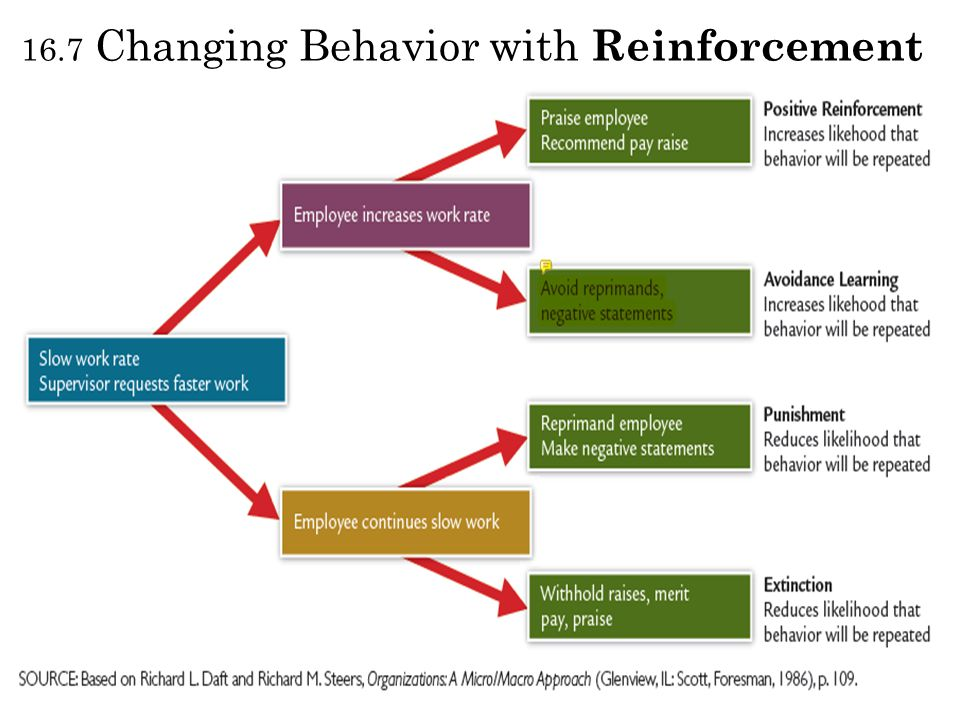 16.7 Changing Behavior with Reinforcement