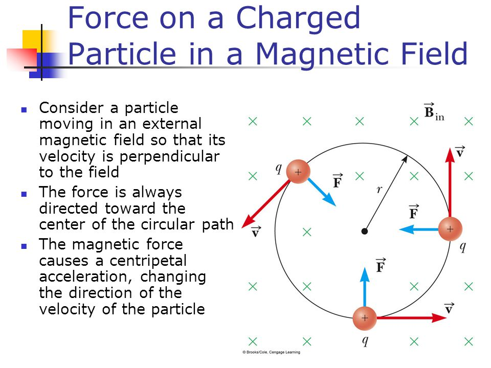 Force on a Charged Particle in a Magnetic Field