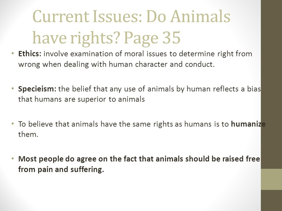 do animals have any rights should Should chimpanzees have legal rights  although animals do enjoy layers of protections  to determine whether an animal should be granted any rights.