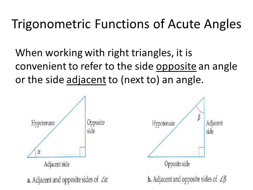 trigonometric ratios of acute angles pdf
