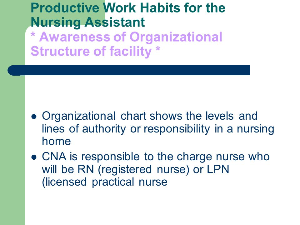 productive work habits for the nursing assistant. certified ...