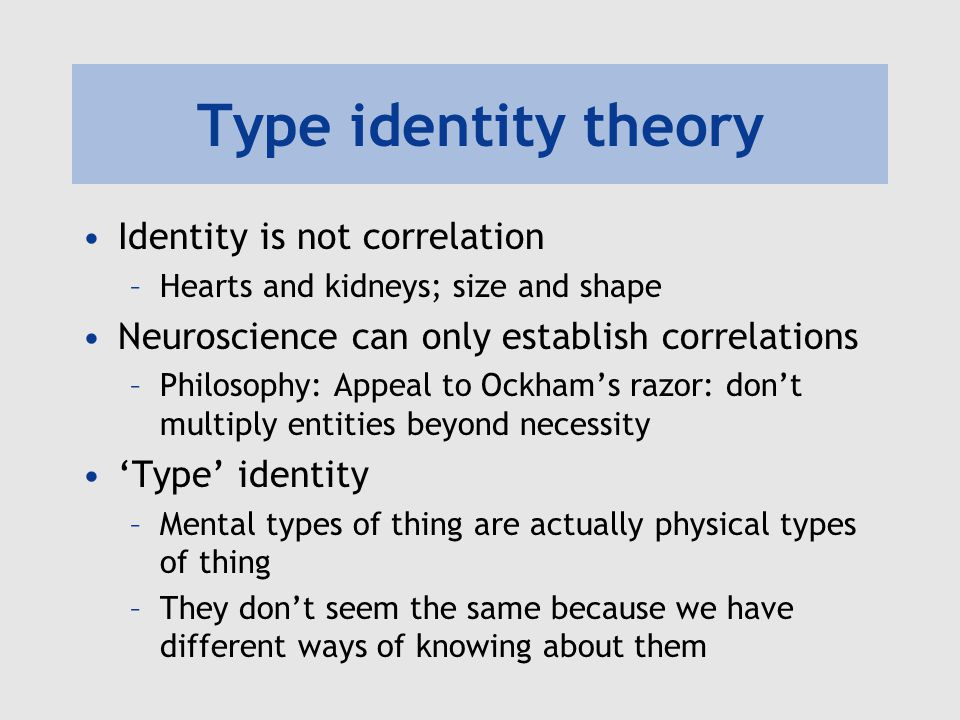 mind brain identity theory