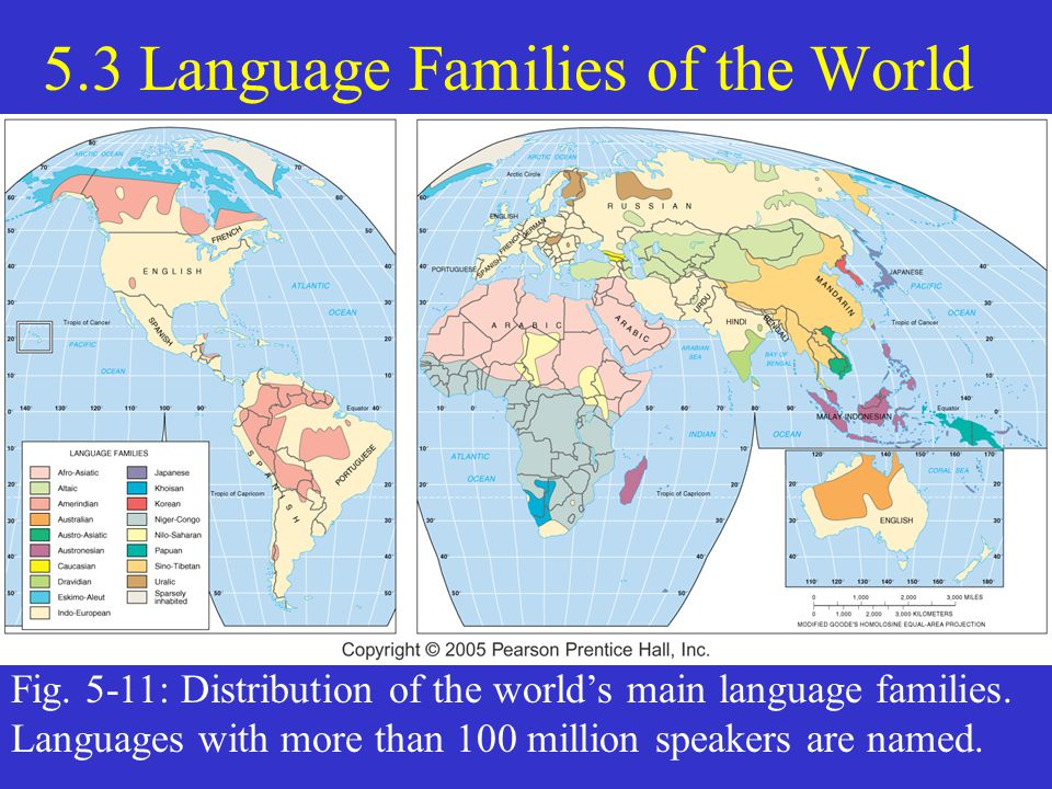 Language Families Of The World Ppt Video Online Download - 5 main languages of the world