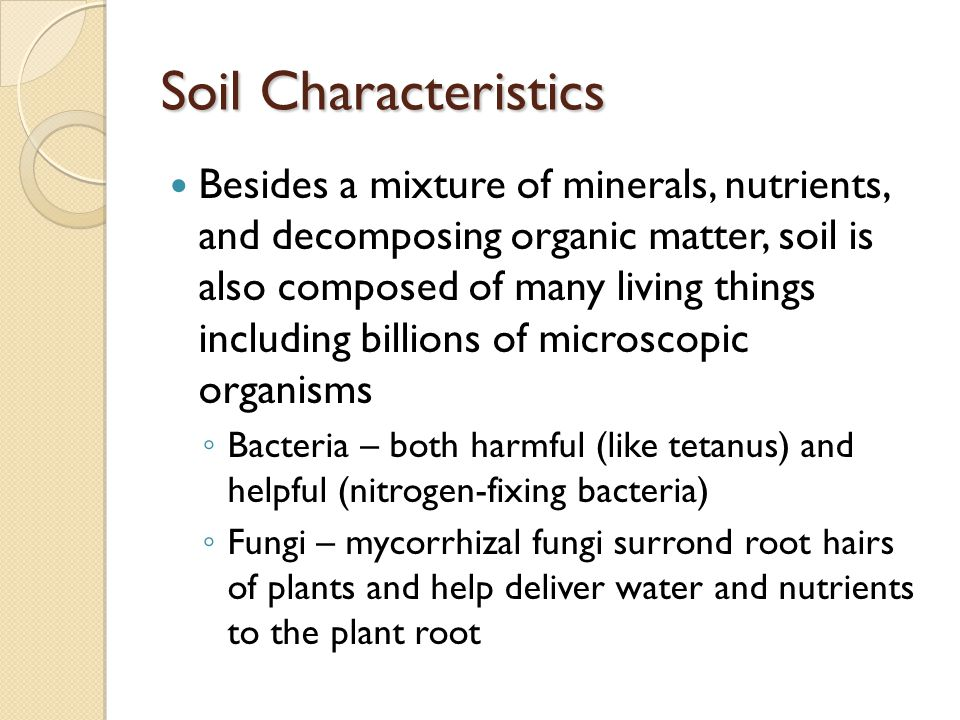 Sustainable ecosystems ppt video online download for What are soil characteristics