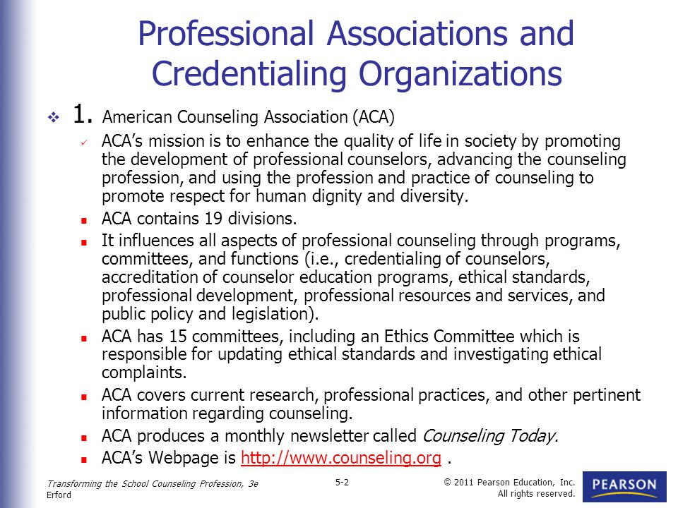 ethical issues for school counselors