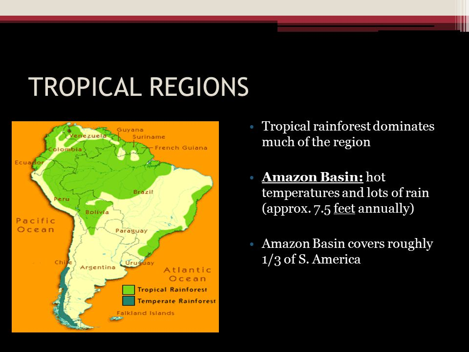 TROPICAL REGIONS Tropical rainforest dominates much of the region